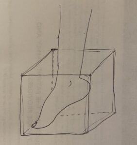 DFU wound detector box